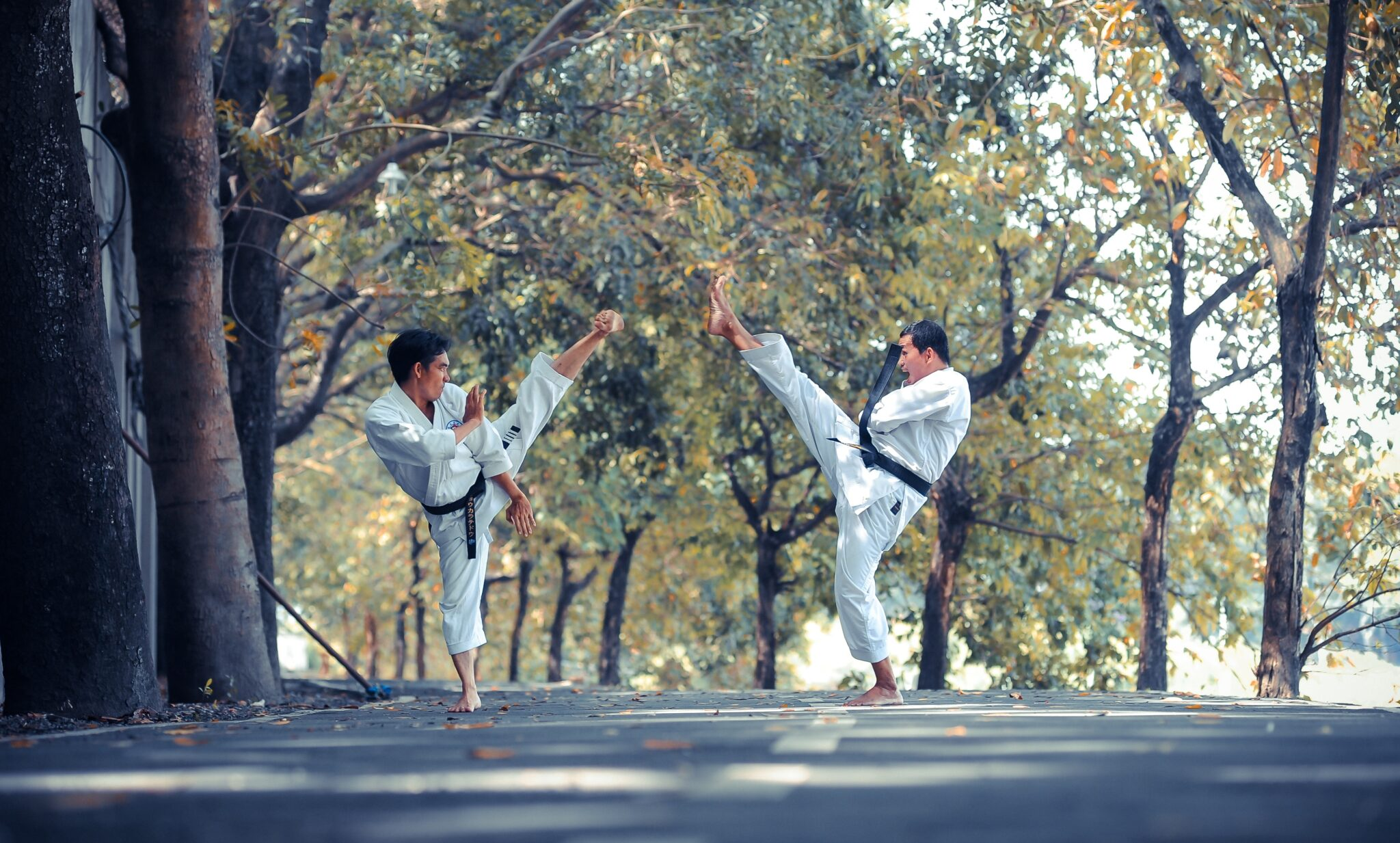 two people doing karate