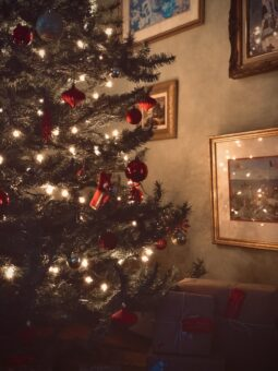 decorate for the holidays with christmas tree and twinkling lights